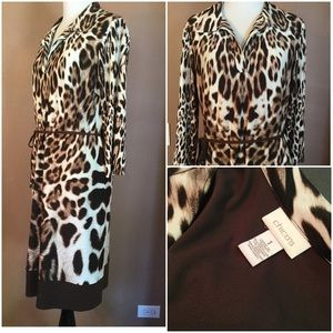 Chico's ! Animal Print Beautiful Dress !